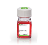 0.25% Trypsin-EDTA (1X), Phenol Red
